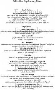 example menu 3 scan